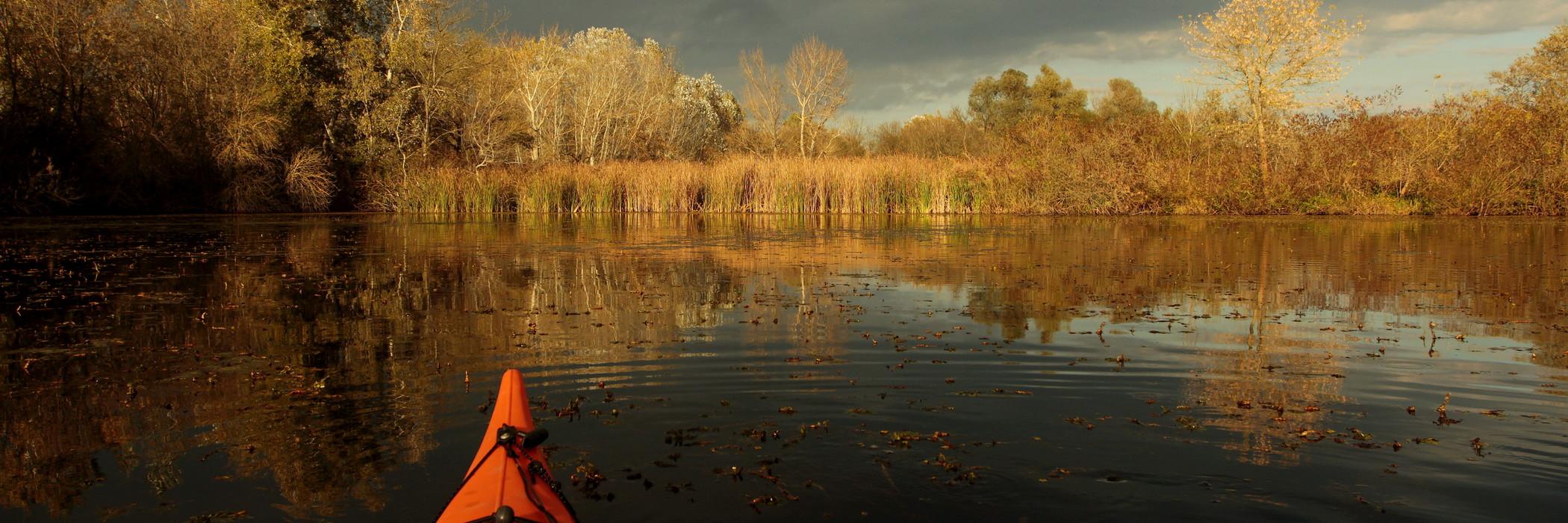 Darvak - Tisza - tó - Őszi daruhúzás a Hortobágyon