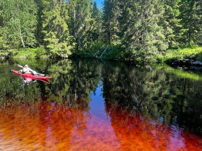 forex irodák finnországban)